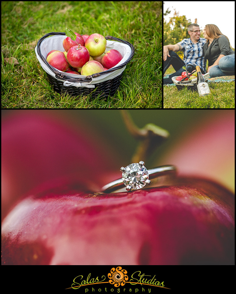 Apple Picking Engagement Photos at Ontario Orchards